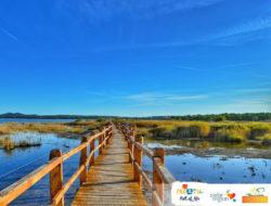 Camping Vransko jezero – Crkvine