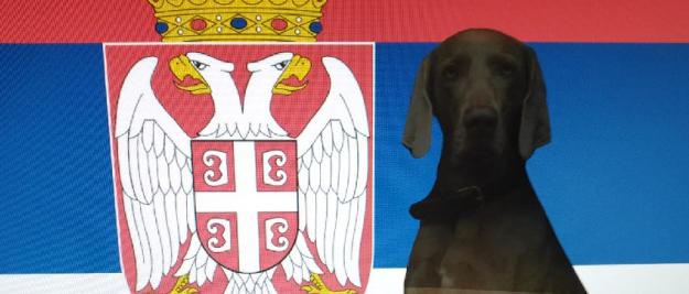 Einreise Serbien